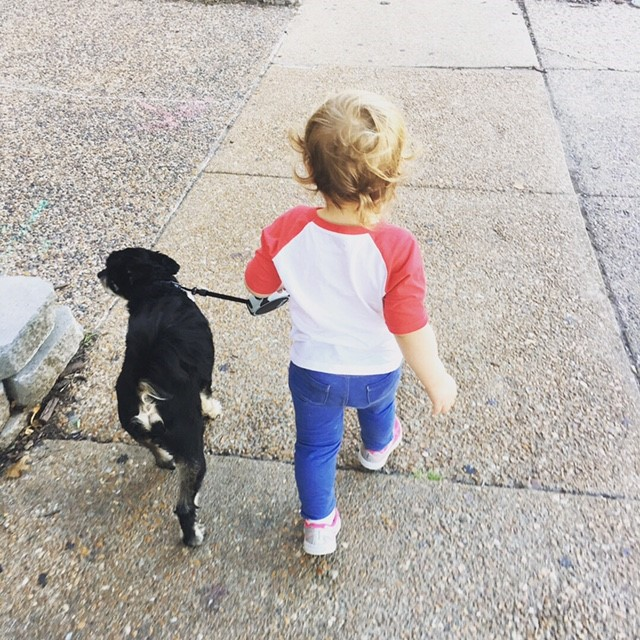 Piper walking Gus